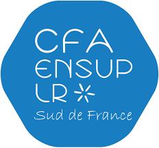 logo CFA ensupLR